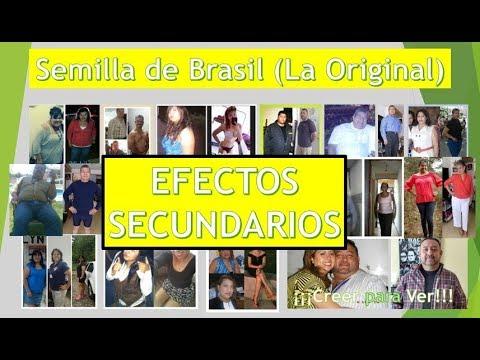 'SEMILLA DE BRASIL' SUS EFECTOS SECUNDARIOS Y COMO CONTRARESTARLOS