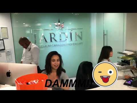 JARDIN PREMIUM CANNABIS DISPENSARY REVIEW:LEGAL MARIJUANA IN LAS VEGAS!(+Jordan 8 On Feet) #Sgk23tv