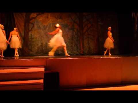 Ballet Long Island Swan Lake 6