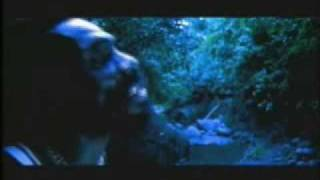 Ganja Farmer By Marlon Asha The Music Video