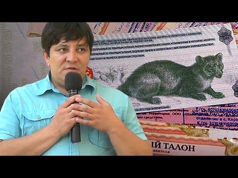 Рустам Давлетбаев.  Эксперимент в Шаймуратово