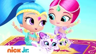 Shimmer and Shine Brazil | Official Theme Song (Music) | Nick Jr.