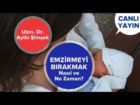 Emzirmeyi Bırakma Yöntemleri - Ne Zaman ve Nasıl? | Bebek Sağlığı