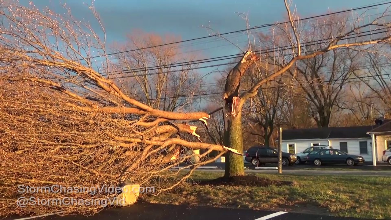 Severe thunderstorms sweep through Southwestern Pa. overnight