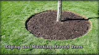 Lawn Edging - Edging and Mulching Around Trees - How To Redefine An Edge