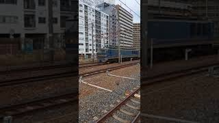 【EF510 青色】JR西日本 東海道本線 新大阪駅で眺める貨物列車