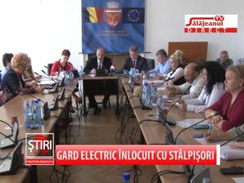 GARD ELECTRIC INLOCUIT CU STALPISORI