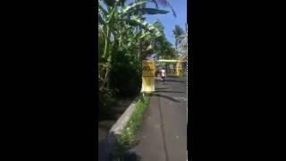 Maybank Bali Marathon 2016 - My virgin FM