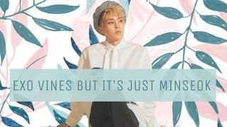 Baixar EXO vines but it's just Minseok pt.2