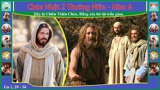 Tin Mừng Chúa Nhật 2 TN - Năm A (Ga 1, 29 - 34)