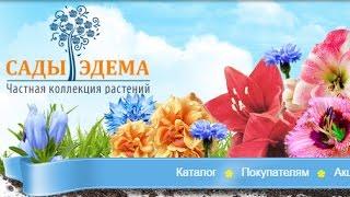 видео Заказать комнатные растения с доставкой по Москве — купить растения в России