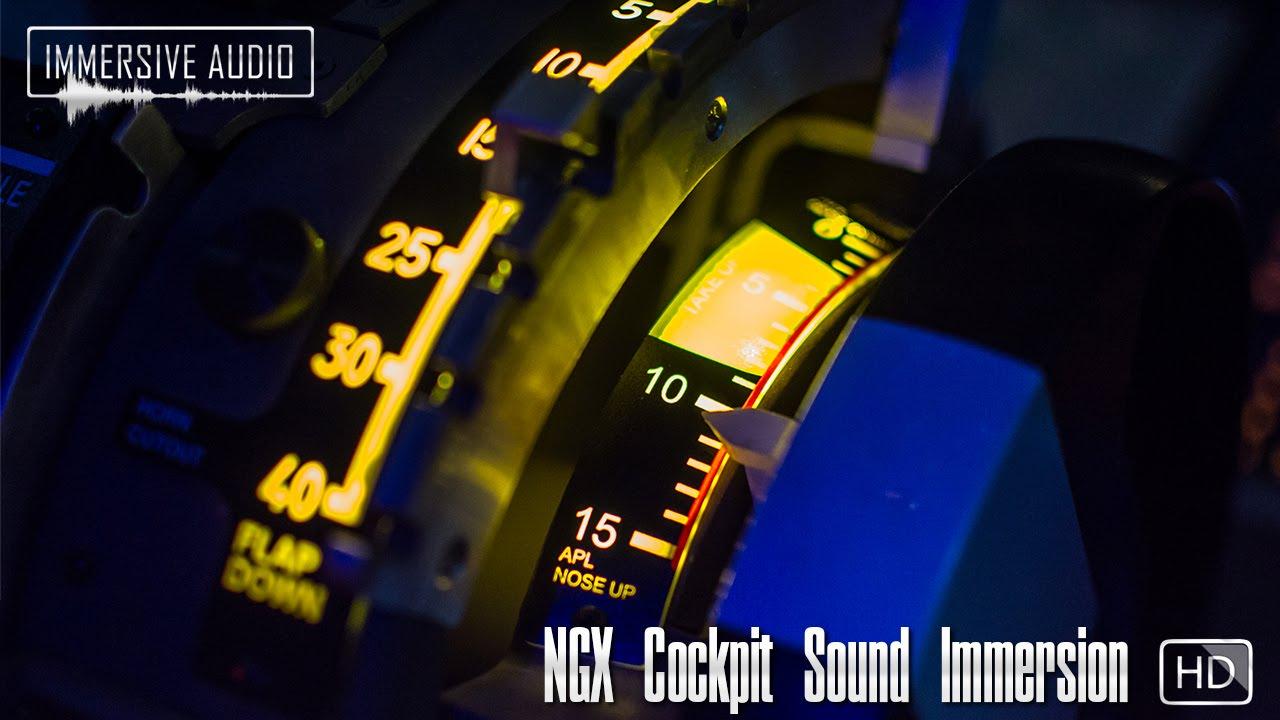 simMarket: IMMERSIVE AUDIO - NGX COCKPIT SOUND IMMERSION FSX P3D