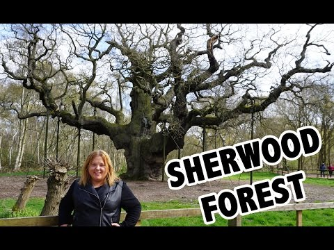 Sherwood Forest, Melton Mowbray & Foxton Locks - Europe Travel Vlog Day 29