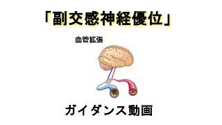 『副交感神経優位』 … ガイダンス動画