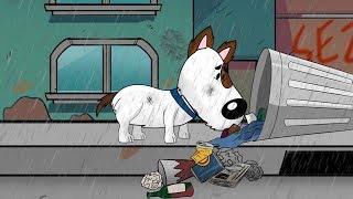 La escalofriante vida de un perro callejero. Comparte