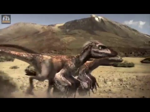 Small But Deadly | Horned Dinosaurs | Discovery Kids