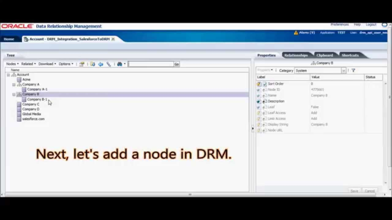 Oracle DRM Integration with Salesforce: Managing Salesforce Master Data in  Oracle DRM