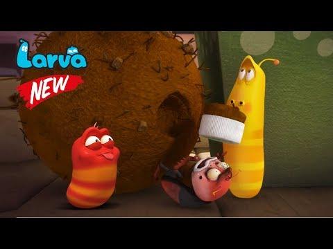 Larva Terbaru New Season  | Episodes Man Date - Tomato | Larva 2018 Full Movie