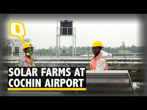 Cochin Airport Grows 40 Tonnes of Vegetables Through Solar Farming | The Quint