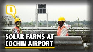 Cochin Airport Grows 40 Tonnes of Vegetables Through Solar Farming | The Quint