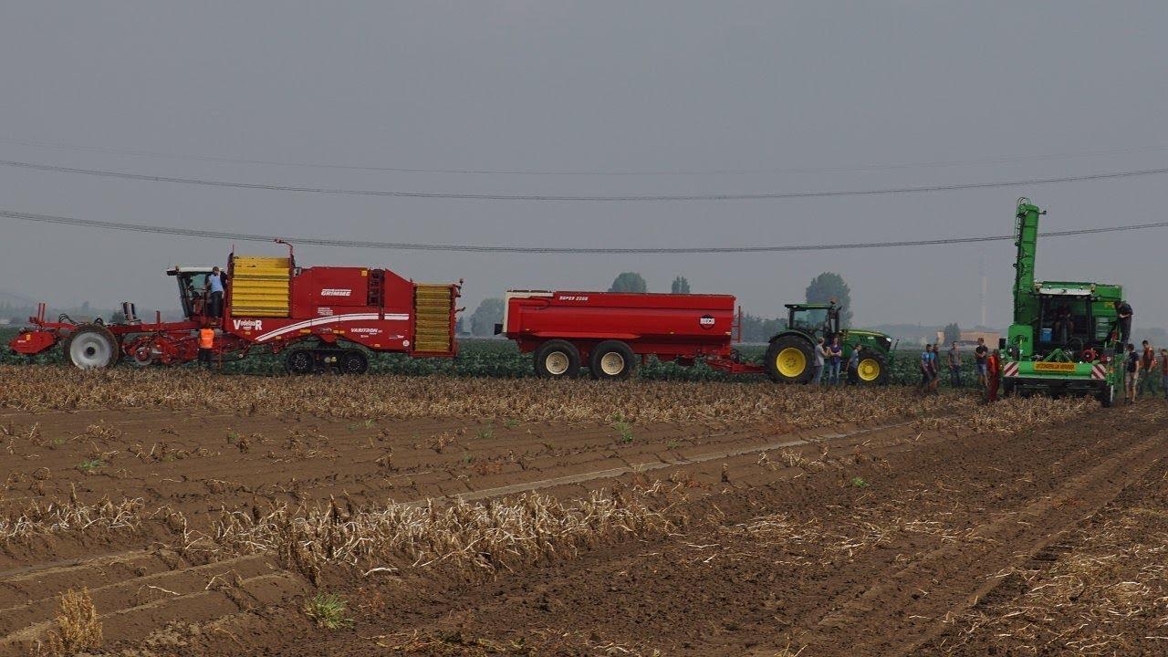 Download Rooi giganten in actie op aardappel demodag in Westmaas AVR Grimme Dewulf Ploeger