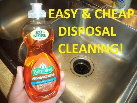 Simple & Cheap Way To Clean A Garbage Disposal