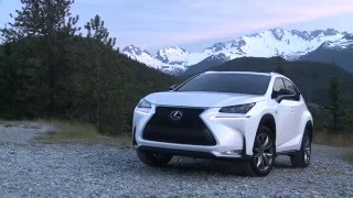 Lexus Genuine Synthetic Motor Oil