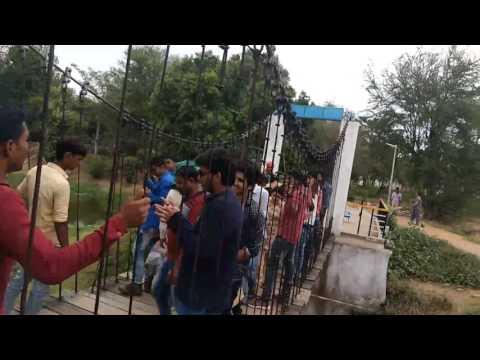 Patna zoo madness