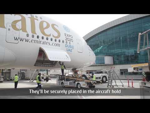 Electronics Handling Service   Emirates Airline