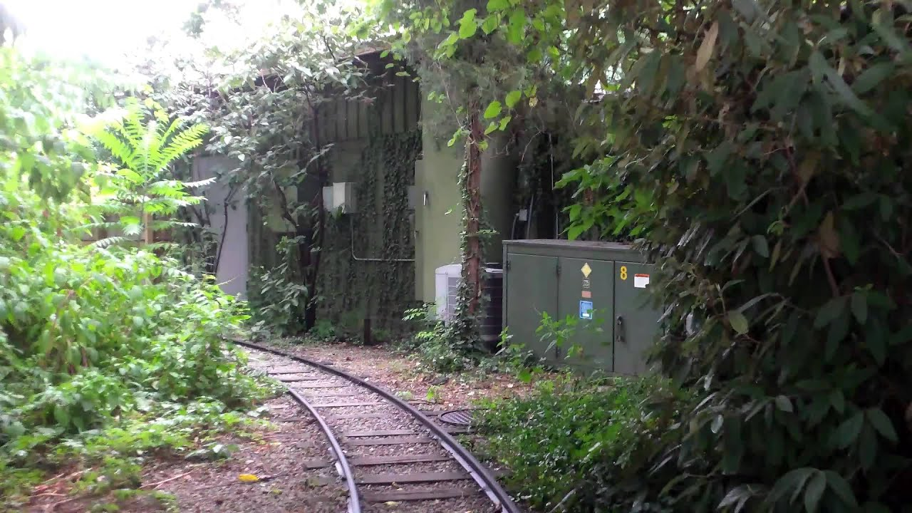 Cincinnati Zoo Train Ride Youtube