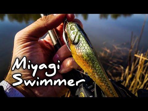 Beast Coast Miyagi Swimmer Review (Paddle Tail Swimbait Review)