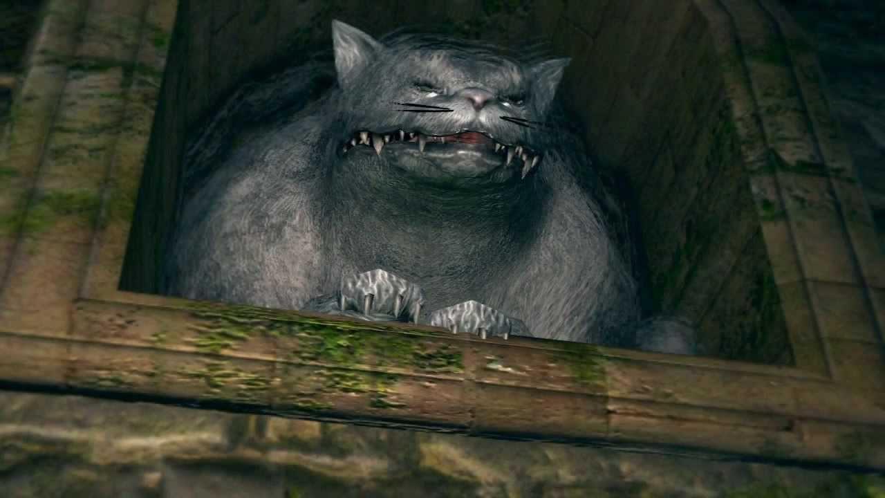 Dark Souls  Scovenant Cat