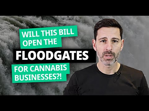 will-this-bill-open-the-floodgates-for-cannabis-businesses?!