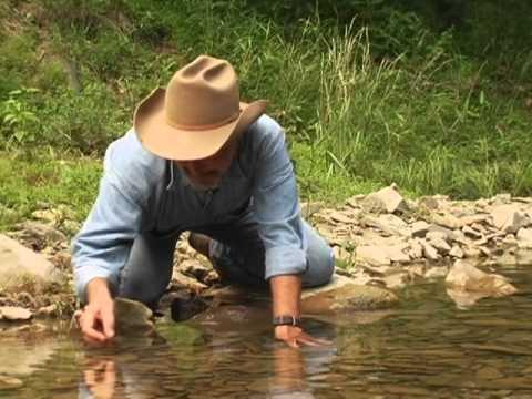 Buck Howdy's Hayride - Skipping Stones