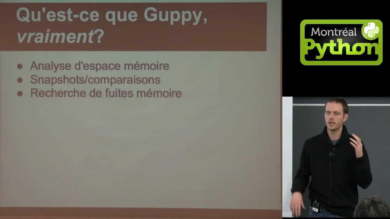 Image from Guppy, un outil d'analyse de l'espace mémoire de process Python