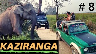Video showing Kaziranga National Park Jungle safari | EP 8 Cultural programme at Orchid