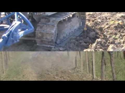 Di raimondo tiller idraulico per vigneti ch v youtube for Di raimondo macchine agricole