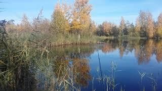Красивая пора Осень рыбалка