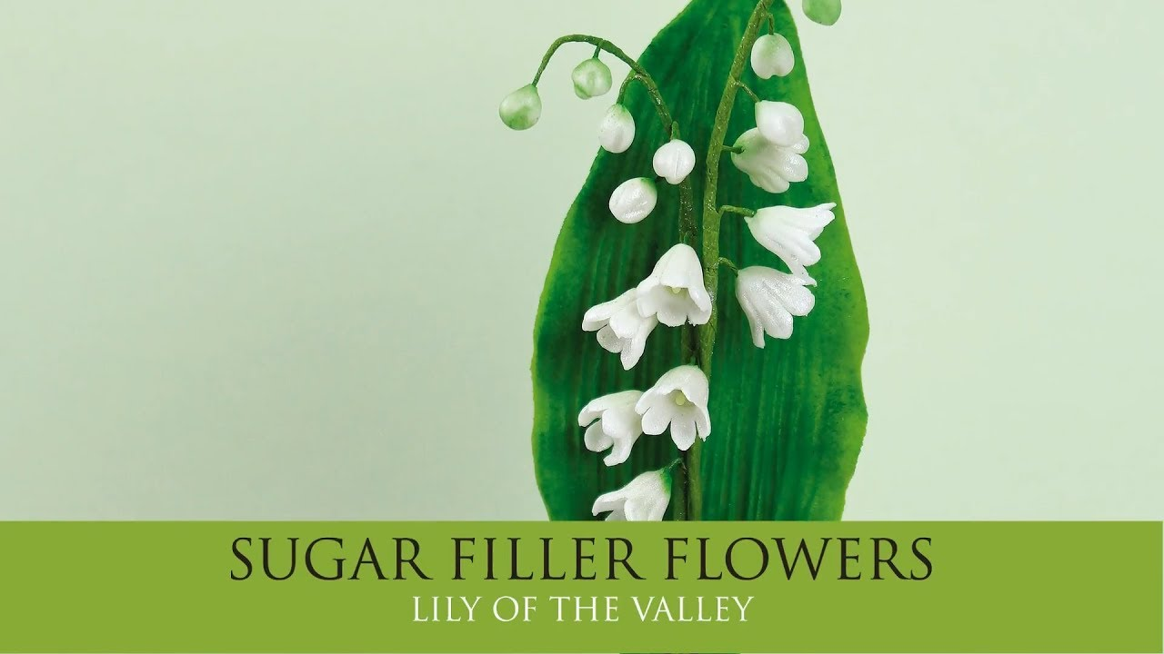 Make A Lily Of The Valley Sugar Filler Flowers Part 4 Youtube