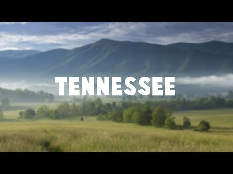 The Tennessee Vlog