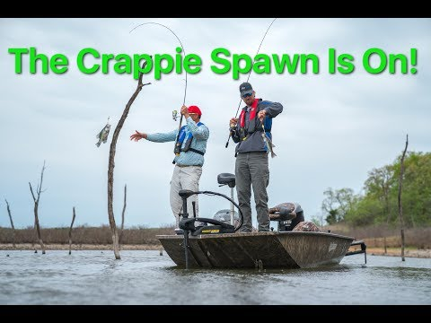 Catching Crappie During Spawn on Slip Corks