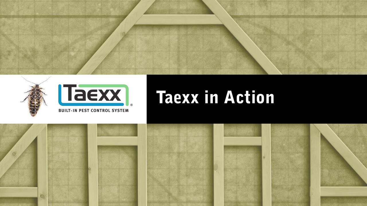 taexx system