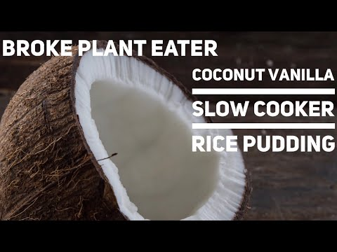 Coconut Vanilla Slow Cooker Rice Pudding