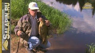 Ловля крупной рыбы без подсачека [salapinru](На крючке хорошая крупная рыба, а подсачека нет. Типовая ситуация на рыбалке. Подсак может быть забыт дома,..., 2013-06-25T07:16:14.000Z)