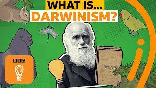 Charles Darwin's theory of evolution explained | BBC Ideas