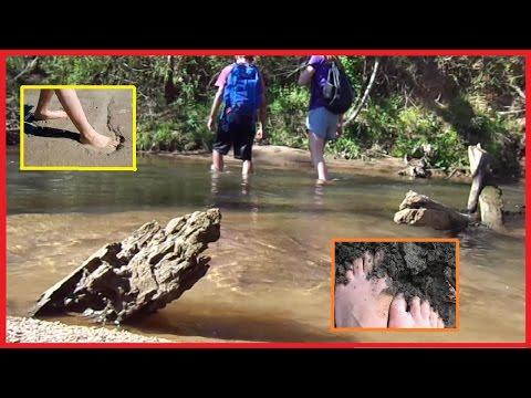 Barefoot Adventures 2 / April Fools!!!