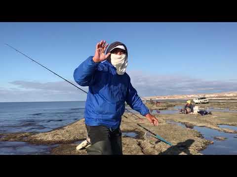 Рыбаки ловят рыбу на Каспии