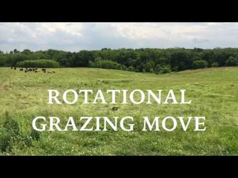 Rotational Grazing :: Daily Move