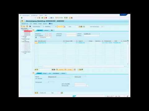 SAP - Wareneingang buchen - Einfacher Beschaffungsprozess BBS1 Aurich MIGO