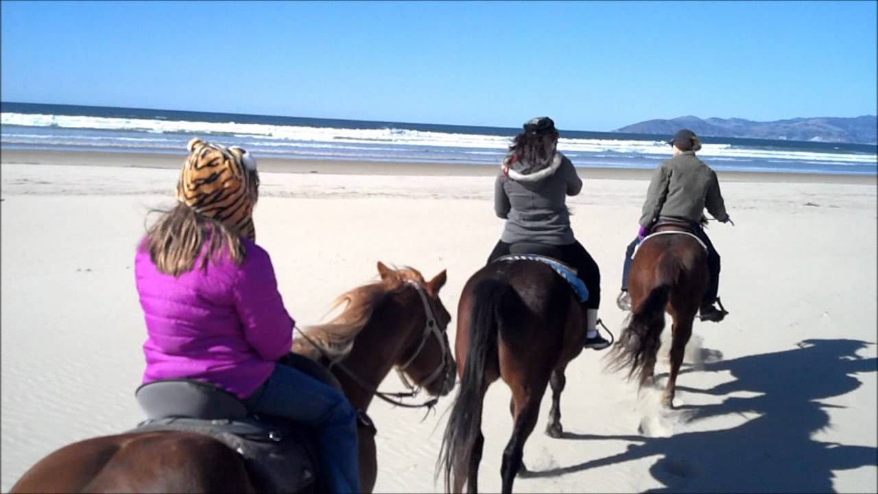 Horseback Riding In Pismo Beach
